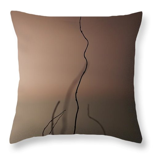 Stick Throw Pillow featuring the photograph Silence by Evelina Kremsdorf