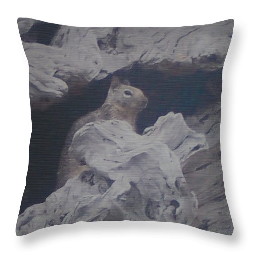 Squirrel Throw Pillow featuring the photograph Silent Observer by Pharris Art