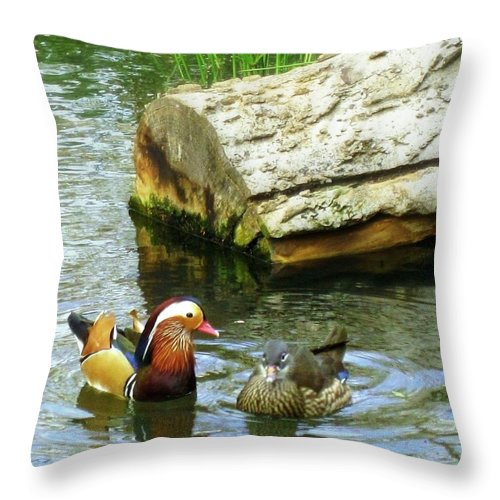 Ponds Throw Pillow featuring the photograph Silent Treatment by Bonita Brandt