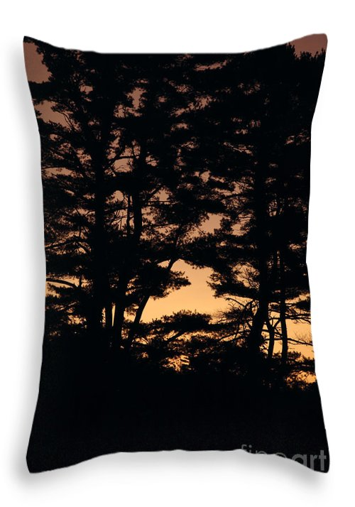 Tree Throw Pillow featuring the photograph Silhouette Of Forest by Erin Paul Donovan