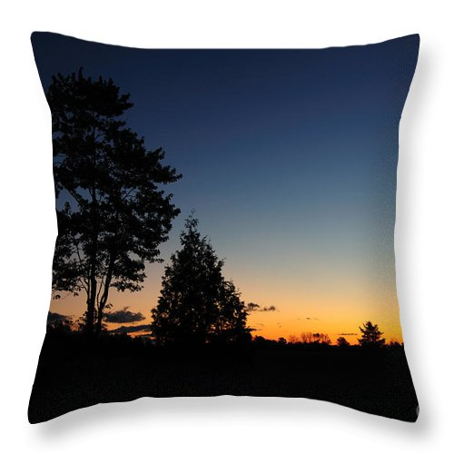 Nature Throw Pillow featuring the photograph Silhouettes by Joe Ng