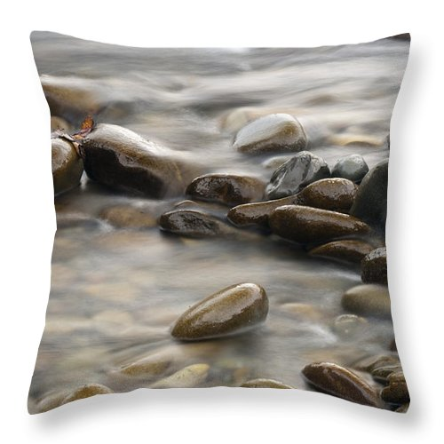 River Throw Pillow featuring the photograph Silk River by Chad Davis