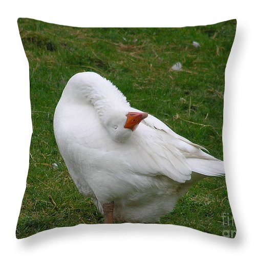 Goose Throw Pillow featuring the photograph Silly Goose by Louise Magno