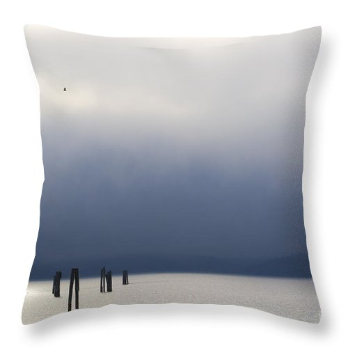 Blue Throw Pillow featuring the photograph Silver And Blue by Idaho Scenic Images Linda Lantzy