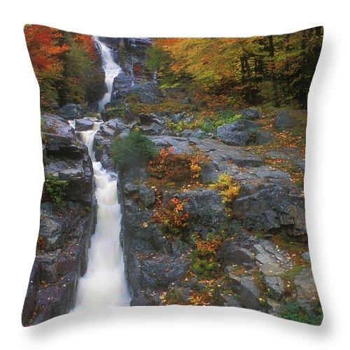 Waterfall Throw Pillow featuring the photograph Silver Cascade In Autumn by John Burk