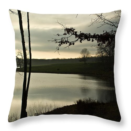 Lake Throw Pillow featuring the photograph Silver Winter Lake by Douglas Barnett