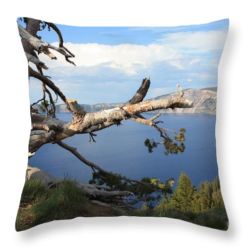 Crater Lake Throw Pillow featuring the photograph Silvery Tree Over Crater Lake by Carol Groenen