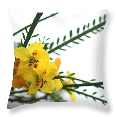 Wild Flowers Throw Pillow featuring the photograph Simple Flower by Tali Turem