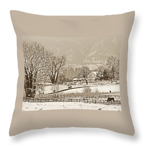 Landscape Throw Pillow featuring the photograph Simpler Times by Marilyn Hunt