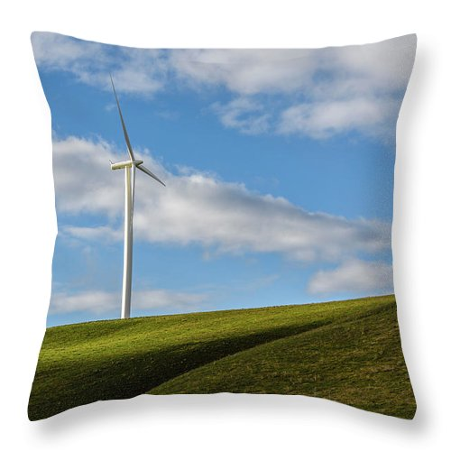 Wind Throw Pillow featuring the photograph Simplicity by Joe Hudspeth