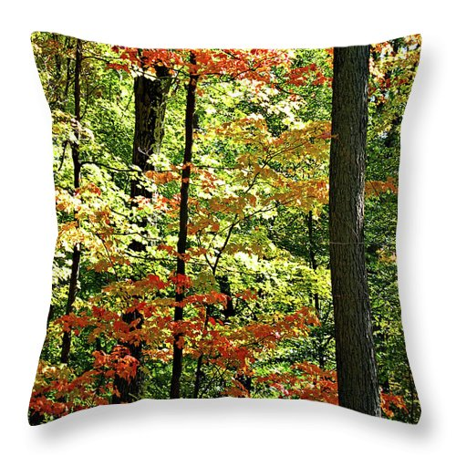Autumn Throw Pillow featuring the digital art Simply Autumn by Joan Minchak