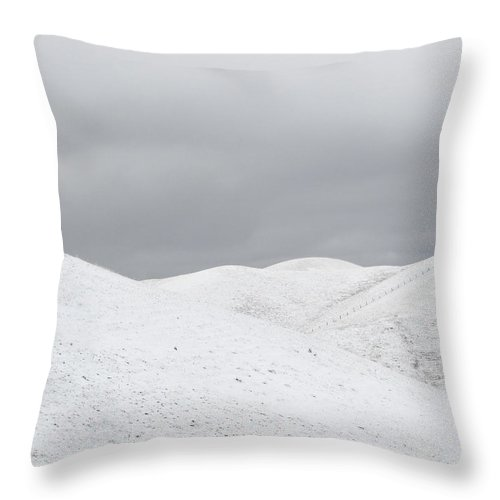 Snow Throw Pillow featuring the photograph Simply Snow by Karen W Meyer