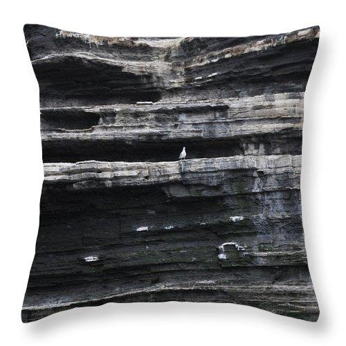 Cliff Throw Pillow featuring the photograph Sir Seagull by Patrizia Tavano