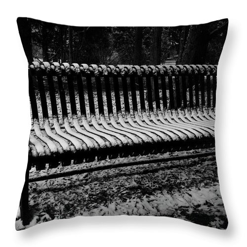 Bench Throw Pillow featuring the photograph Sit If You Dare by David Kehrli