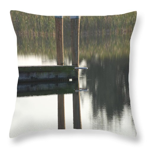 Grass Throw Pillow featuring the photograph Sitting Bird by Rob Hans