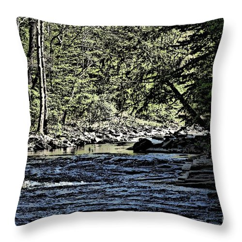 Landscape Throw Pillow featuring the photograph Six Mile Creek Ithaca Ny by David Lane