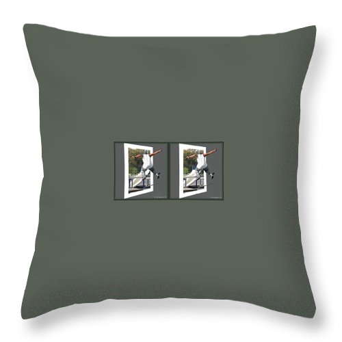 3d Throw Pillow featuring the photograph Skateboarder - Gently Cross Your Eyes And Focus On The Middle Image by Brian Wallace