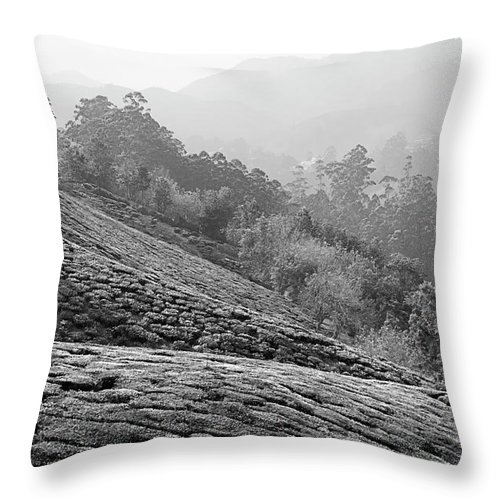 Asia Throw Pillow featuring the photograph Skn 6521 Nature's Bounty B/w by Sunil Kapadia