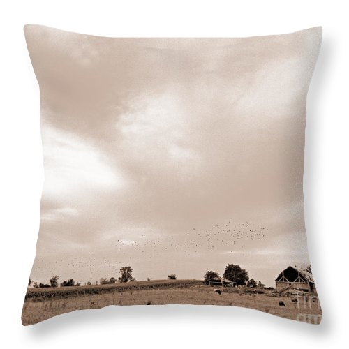 Sepia Landscape Throw Pillow featuring the photograph Sky View by Jacqueline Milner