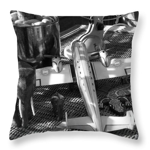 Still Life Throw Pillow featuring the photograph Skycruiser by Charles Stuart