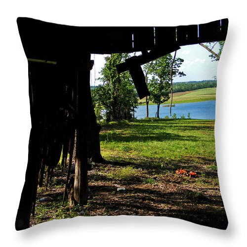 Landscape Throw Pillow featuring the photograph Skylights by Rachel Christine Nowicki