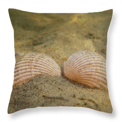 Shell Throw Pillow featuring the photograph Sleeping Mermaid by Are Lund