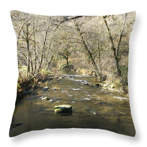 River Throw Pillow featuring the photograph Sleepy Creek by Shari Chavira