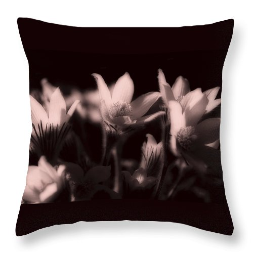 Flowers Throw Pillow featuring the photograph Sleepy Flowers 2 by Marilyn Hunt
