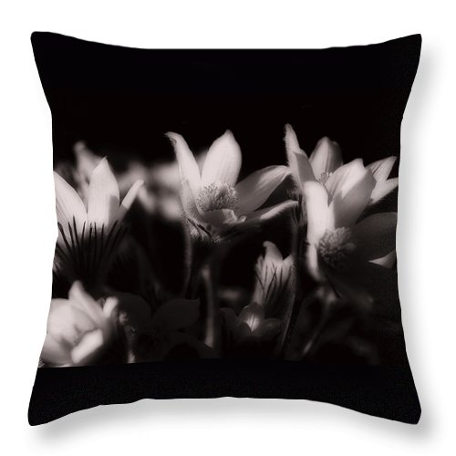 Flowers Throw Pillow featuring the photograph Sleepy Flowers by Marilyn Hunt