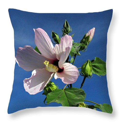 Floral Throw Pillow featuring the photograph Sleepy Hibiscus by Peg Urban