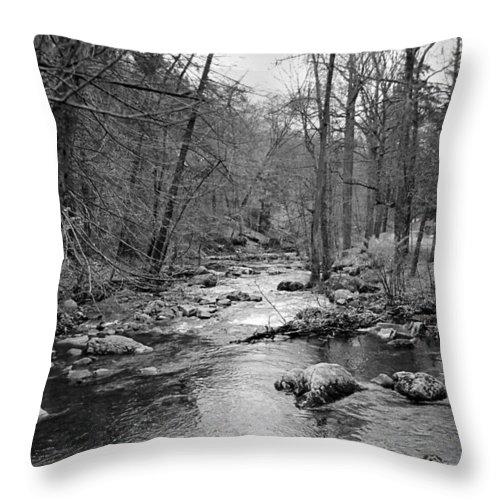 Landscape Throw Pillow featuring the photograph Sleepy Hollow Cemetary by Joseph Mari