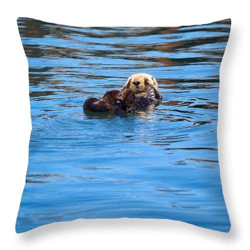 Otter Throw Pillow featuring the photograph Sleepy Otter by Erin Finnegan