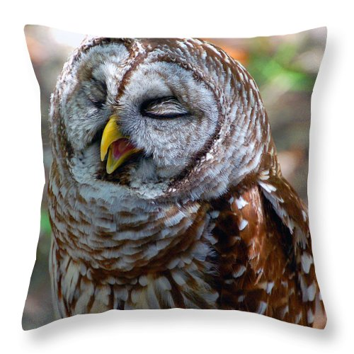 Owl Throw Pillow featuring the photograph Sleepy Owl by Donna Proctor
