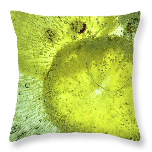 Air Throw Pillow featuring the photograph Slices Of Lemon by Jarmo Honkanen