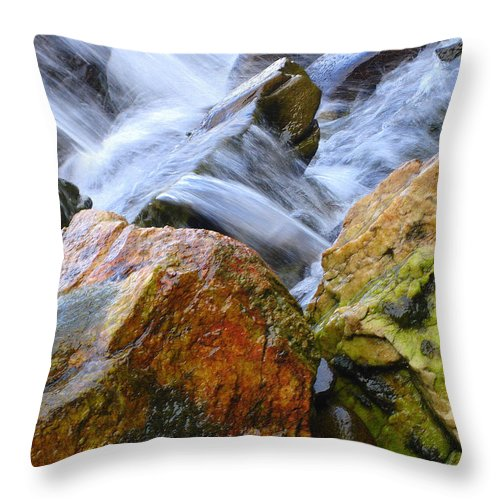 Rocks Throw Pillow featuring the photograph Slippery When Wet by Shelley Jones