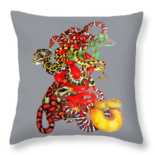 Reptile Throw Pillow featuring the drawing Slither by Barbara Keith