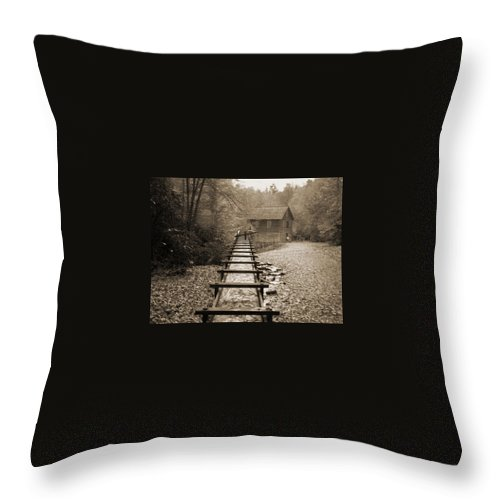 Sluice Throw Pillow featuring the photograph Sluice by Larry Lacy