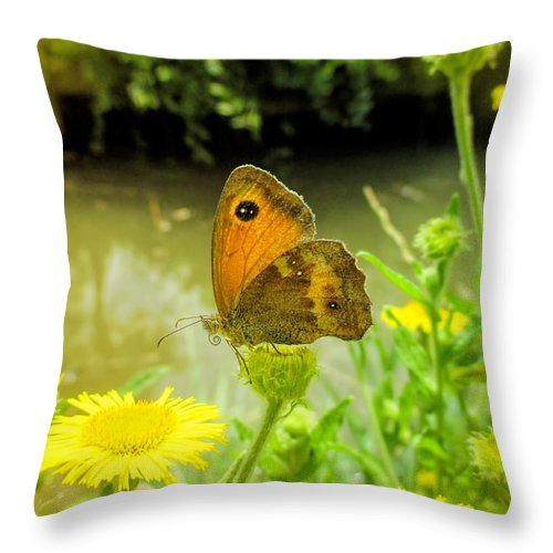 Small Heath Butterfly Throw Pillow featuring the photograph Small Heath Butterfly by Valerie Anne Kelly