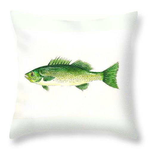 Fish Throw Pillow featuring the painting Small Mouth Bass by Michael Vigliotti