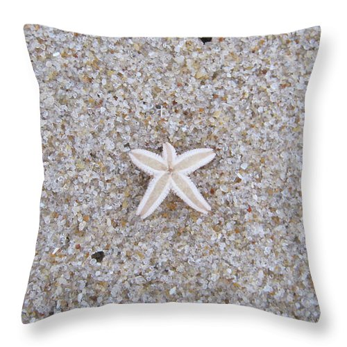 Sylt Throw Pillow featuring the photograph Small Star Fish by Heidi Sieber