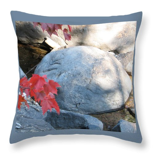 Stone Throw Pillow featuring the photograph Small Wonder by Kelly Mezzapelle
