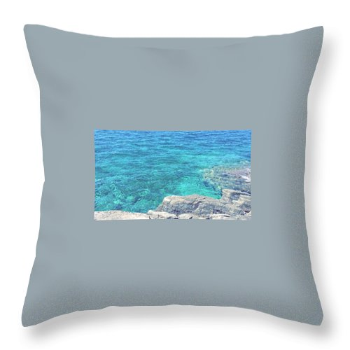 Landscape Throw Pillow featuring the pyrography Smdl by Laura Pia Giovanna Morocutti