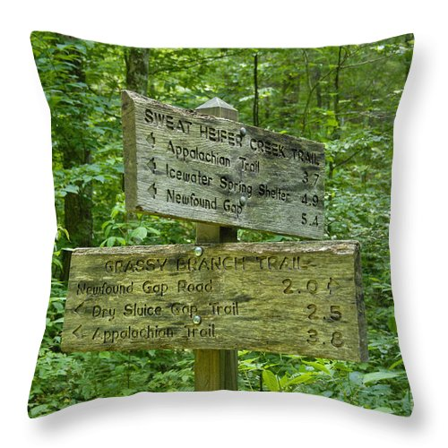 Smoky Mountain National Park Throw Pillow featuring the photograph Smoky Mountain Directional by David Lee Thompson