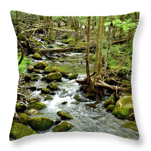 Smoky Mountains Throw Pillow featuring the photograph Smoky Mountain Stream 1 by Nancy Mueller