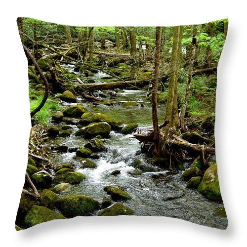 River Throw Pillow featuring the photograph Smoky Mountain Stream 2 by Nancy Mueller