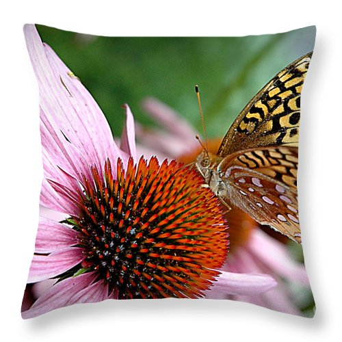Flower Throw Pillow featuring the photograph Snack Time by Jacqueline Milner