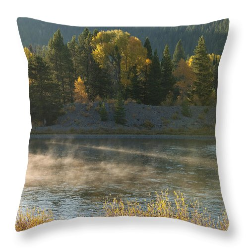 Grand Teton Throw Pillow featuring the photograph Snake River Sunrise by Sandra Bronstein