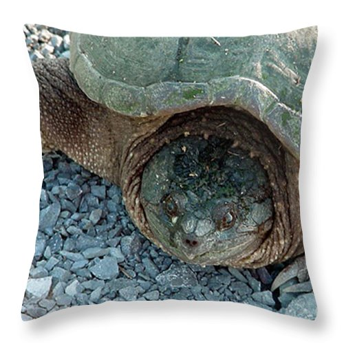 Snapping Turtle Throw Pillow featuring the digital art Snapping Turtle by Jacqueline Milner
