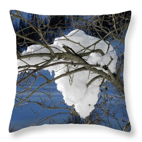 Snow Throw Pillow featuring the photograph Snow And Africa by Stefania Levi
