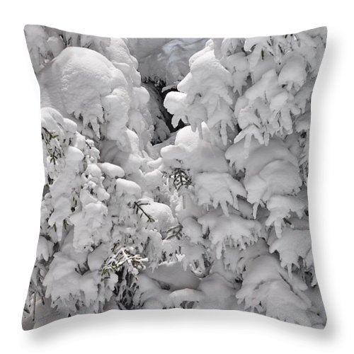 Snow Throw Pillow featuring the photograph Snow Coat by Alex Grichenko